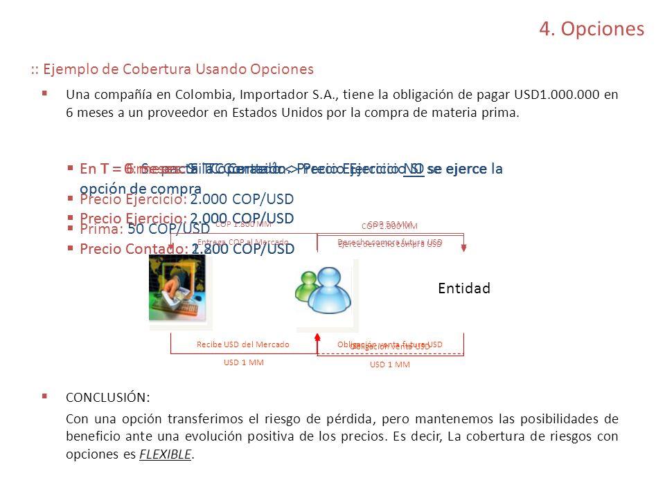 4. Opciones :: Ejemplo de Cobertura Usando Opciones