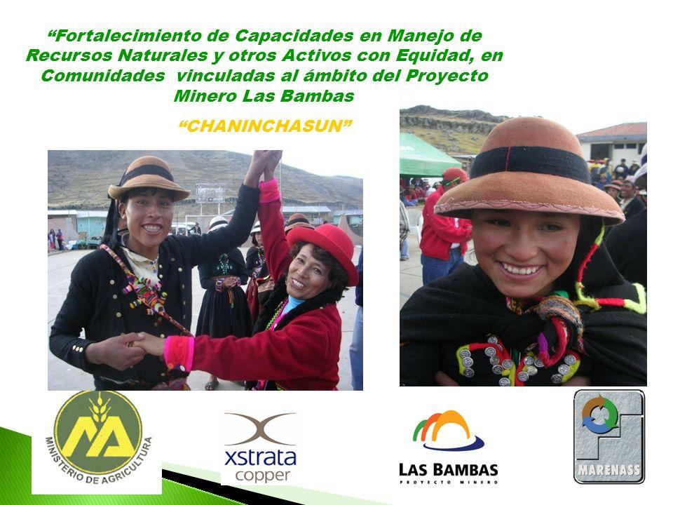 Fortalecimiento de Capacidades en Manejo de Recursos Naturales y otros Activos con Equidad, en Comunidades vinculadas al ámbito del Proyecto Minero Las Bambas