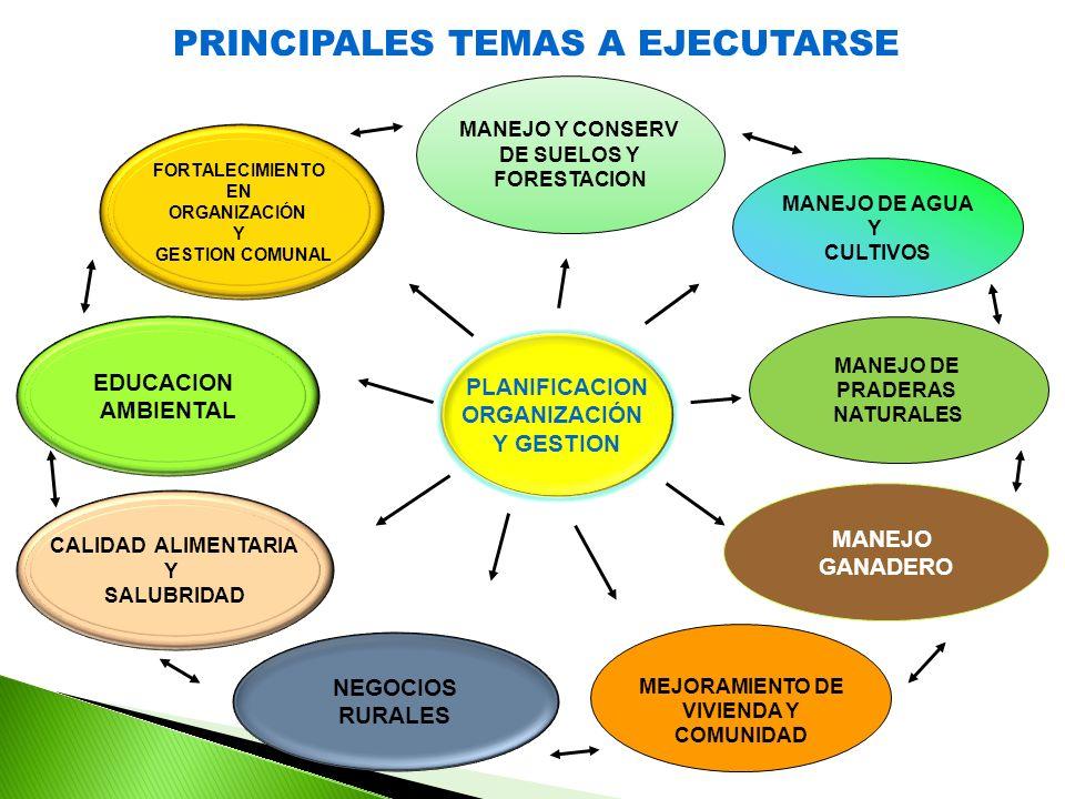 PRINCIPALES TEMAS A EJECUTARSE