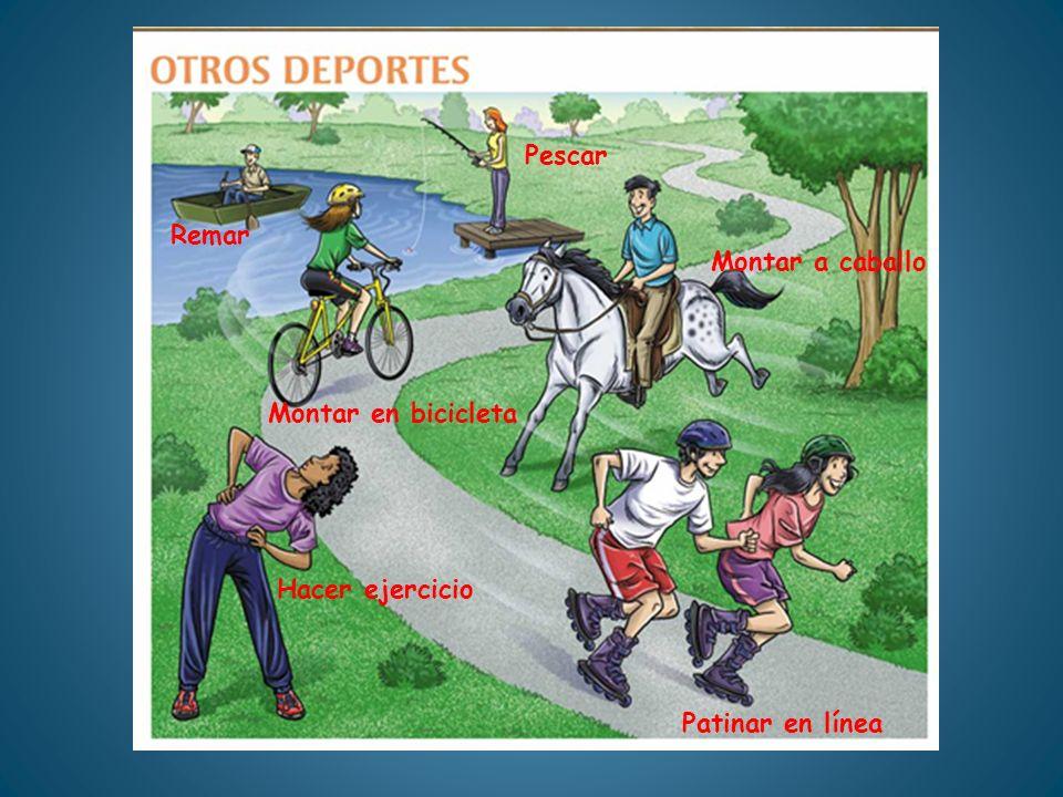 Pescar Remar Montar a caballo Montar en bicicleta Hacer ejercicio Patinar en línea