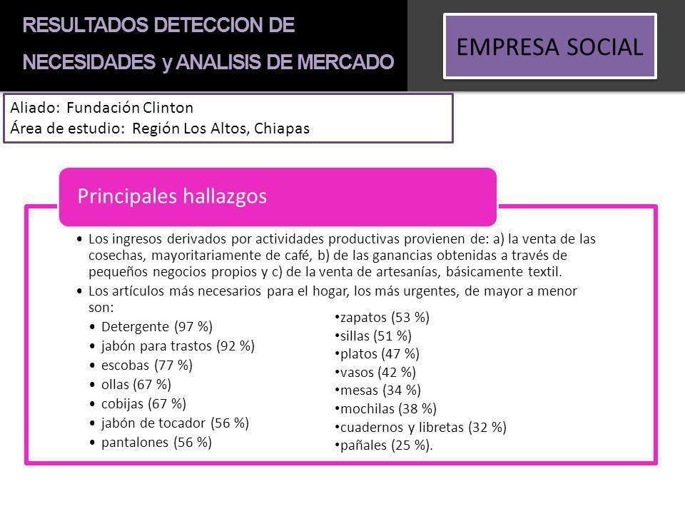 EMPRESA SOCIAL Principales hallazgos