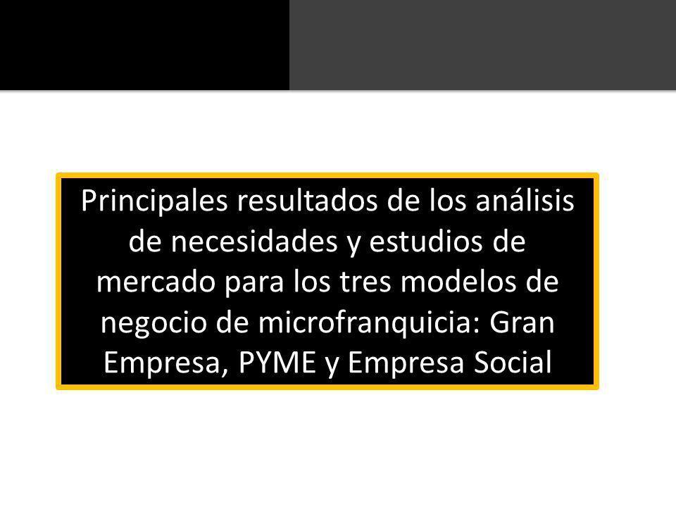 Principales resultados de los análisis de necesidades y estudios de mercado para los tres modelos de negocio de microfranquicia: Gran Empresa, PYME y Empresa Social