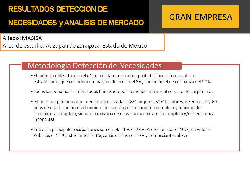 GRAN EMPRESA Metodología Detección de Necesidades