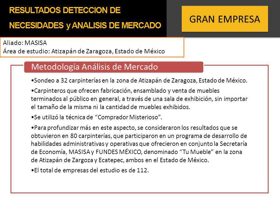GRAN EMPRESA Metodología Análisis de Mercado