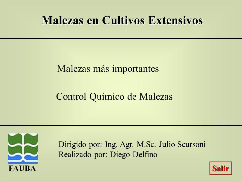 Malezas en Cultivos Extensivos