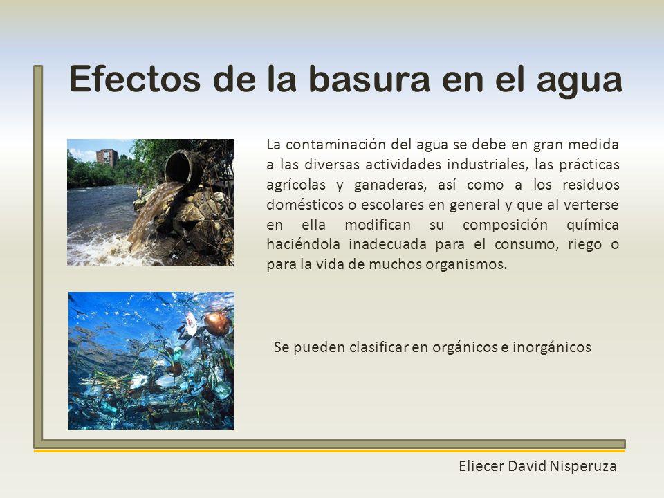 Efectos de la basura en el agua