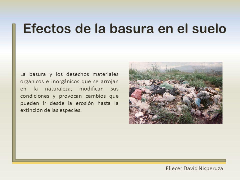 Efectos de la basura en el suelo