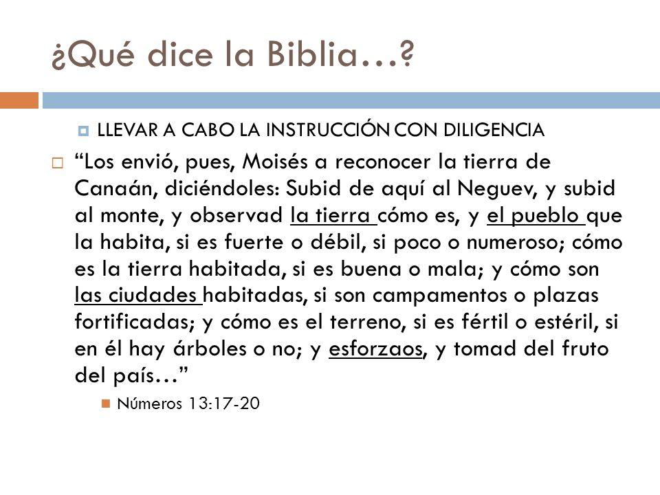 ¿Qué dice la Biblia… LLEVAR A CABO LA INSTRUCCIÓN CON DILIGENCIA.