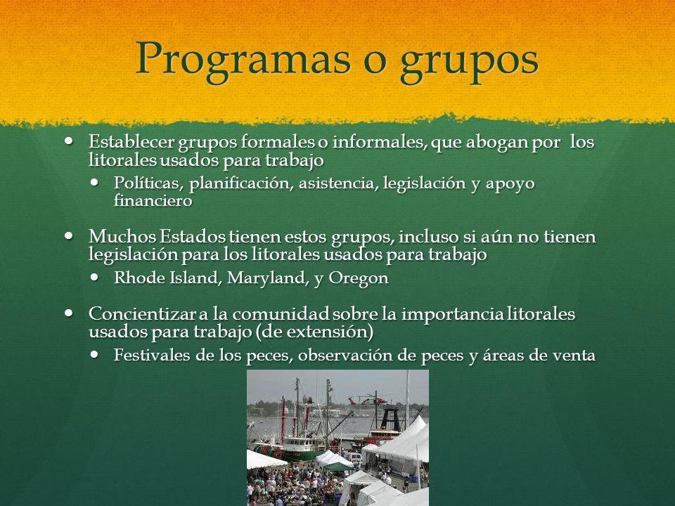 Programas o grupos Establecer grupos formales o informales, que abogan por los litorales usados para trabajo.