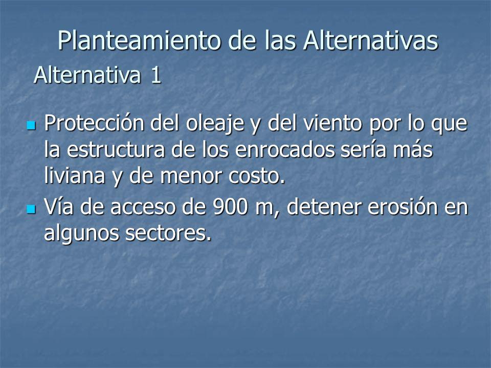 Planteamiento de las Alternativas