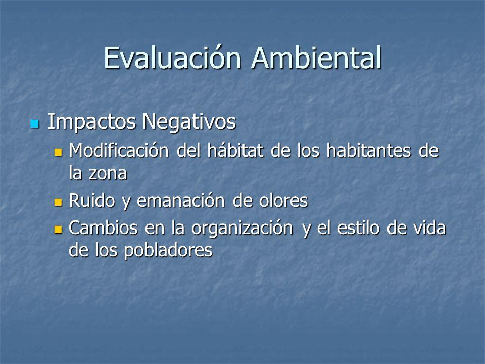 Evaluación Ambiental Impactos Negativos