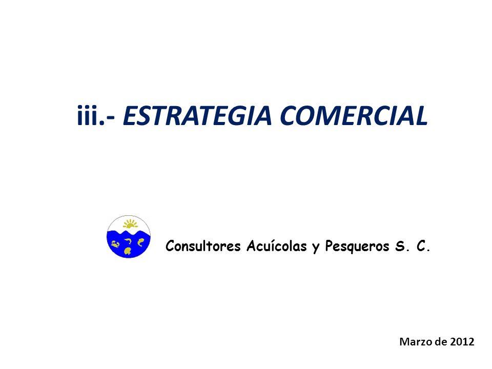 iii.- ESTRATEGIA COMERCIAL