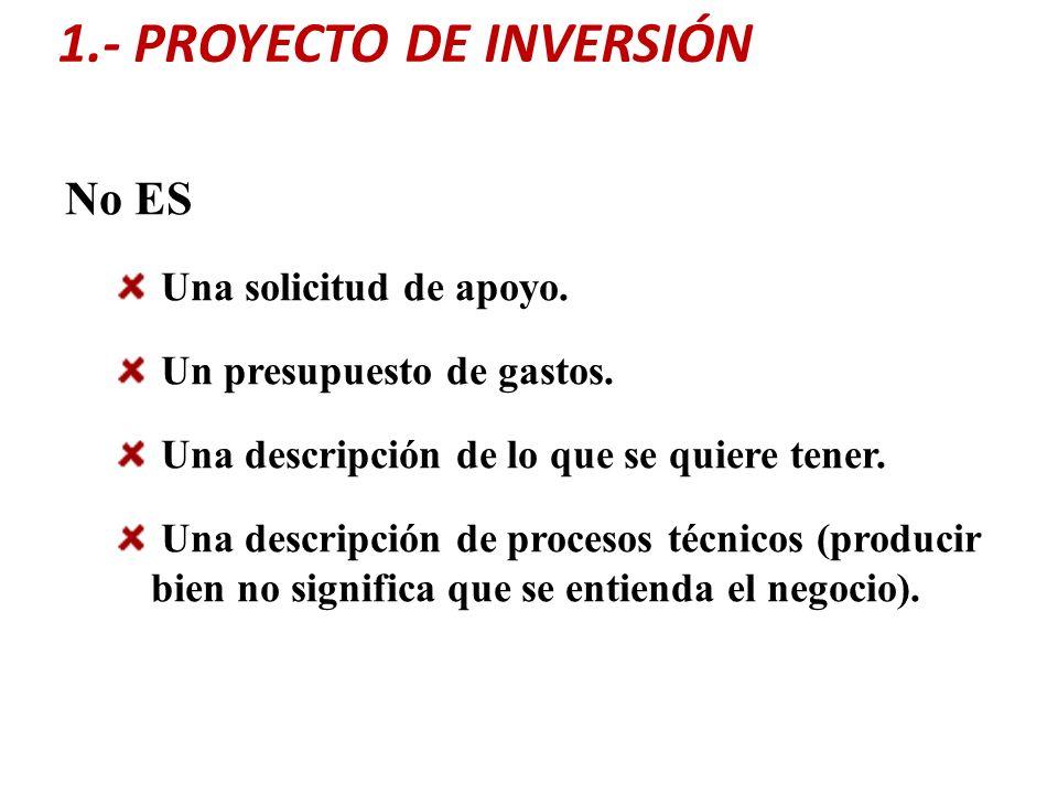 1.- PROYECTO DE INVERSIÓN