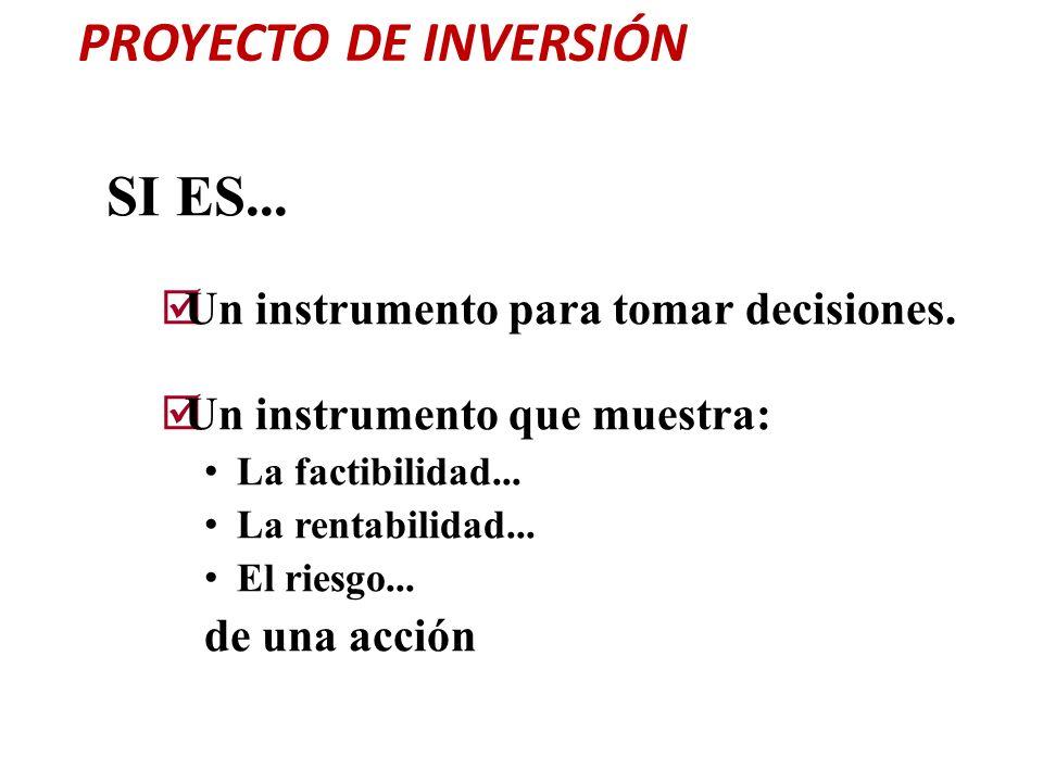 PROYECTO DE INVERSIÓN SI ES... Un instrumento para tomar decisiones.
