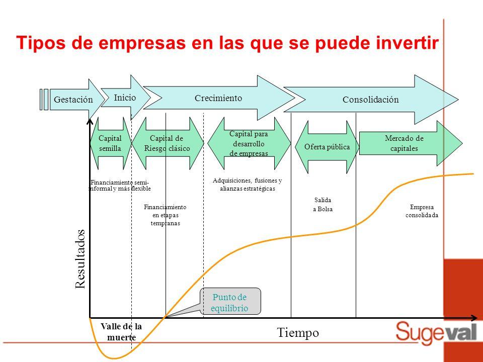 Tipos de empresas en las que se puede invertir