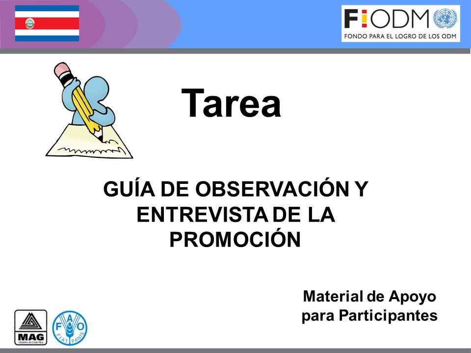 GUÍA DE OBSERVACIÓN Y ENTREVISTA DE LA PROMOCIÓN