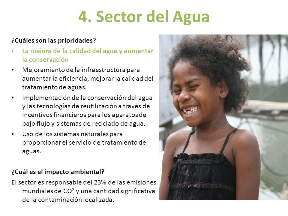 4. Sector del Agua ¿Cuáles son las prioridades
