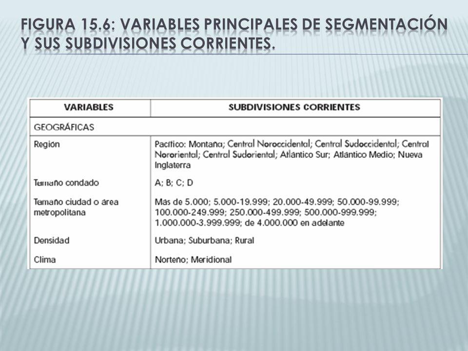 Figura 15.6: Variables principales de segmentación y sus subdivisiones corrientes.