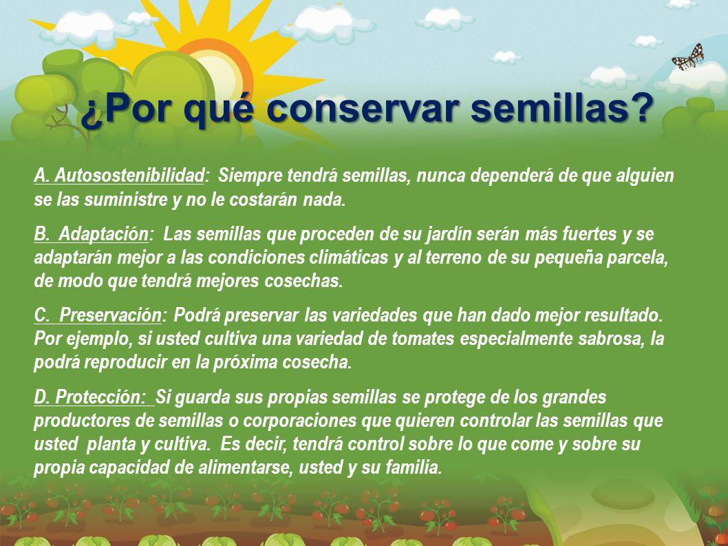 ¿Por qué conservar semillas