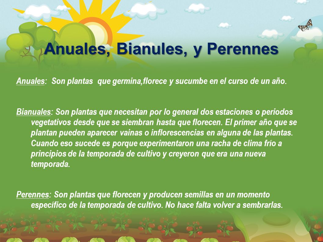 Anuales, Bianules, y Perennes