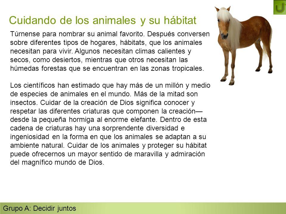 Cuidando de los animales y su hábitat