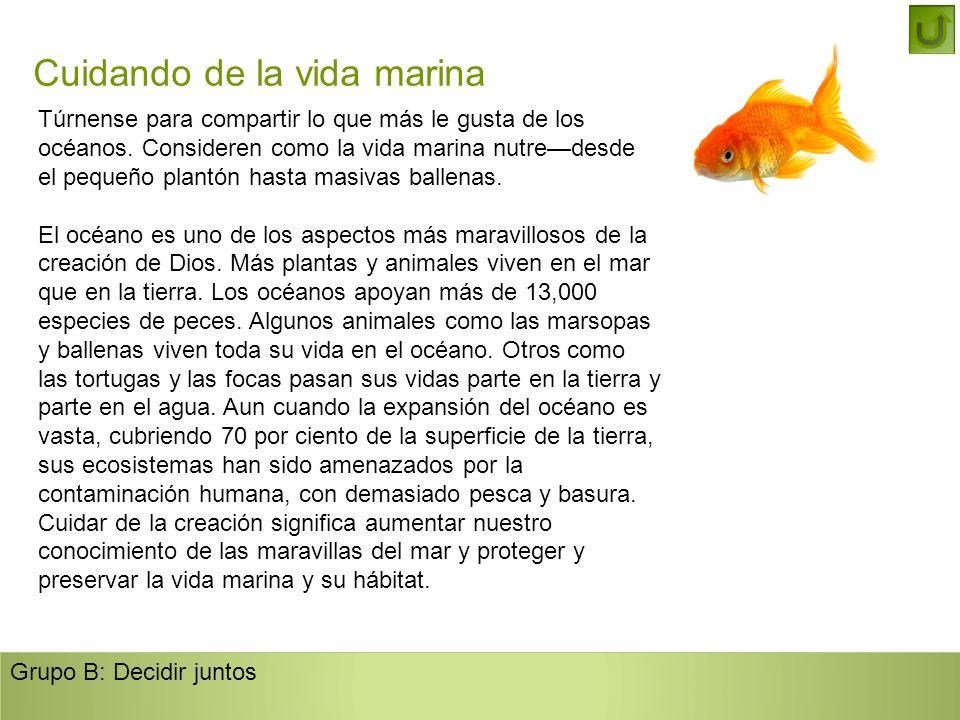 Cuidando de la vida marina