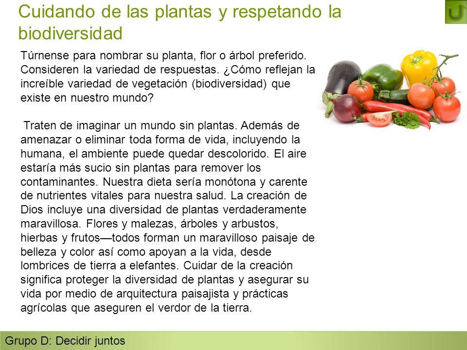 Cuidando de las plantas y respetando la biodiversidad