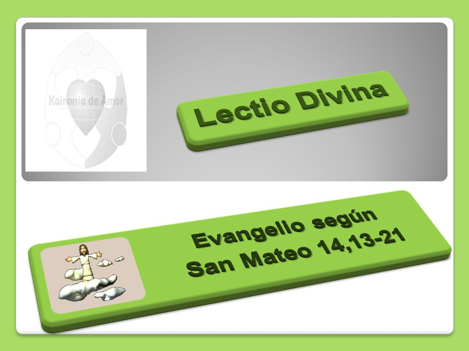 Evangelio según San Mateo 14,13-21