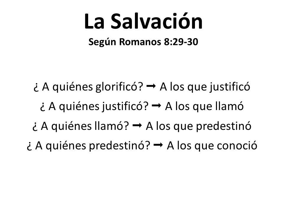 La Salvación Según Romanos 8:29-30