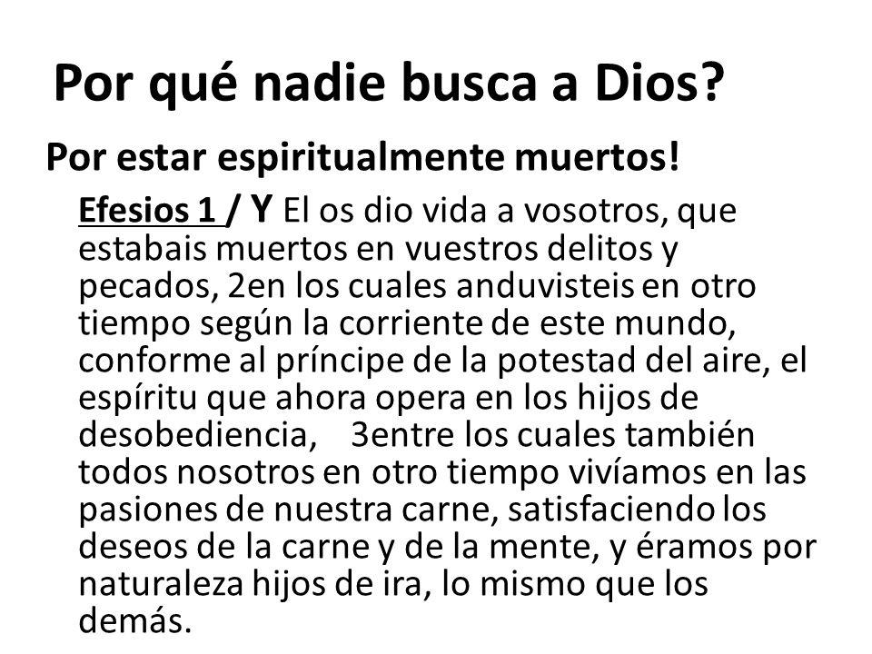 Por qué nadie busca a Dios