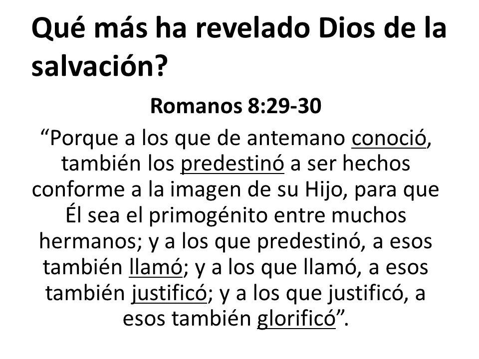 Qué más ha revelado Dios de la salvación