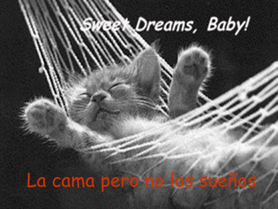 La cama pero no los sueños