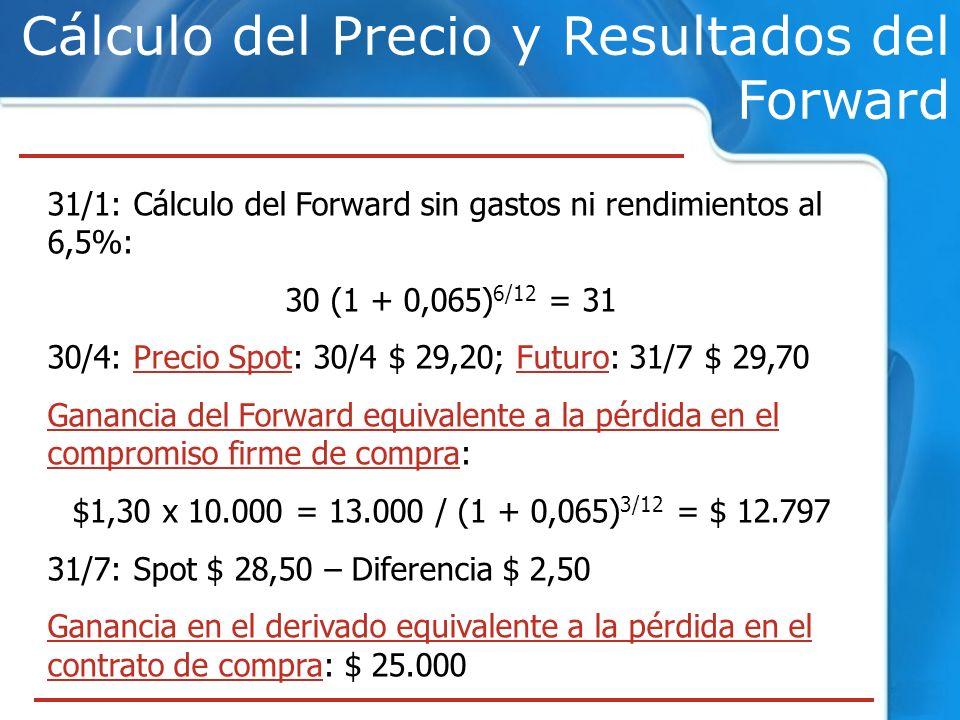 Cálculo del Precio y Resultados del Forward