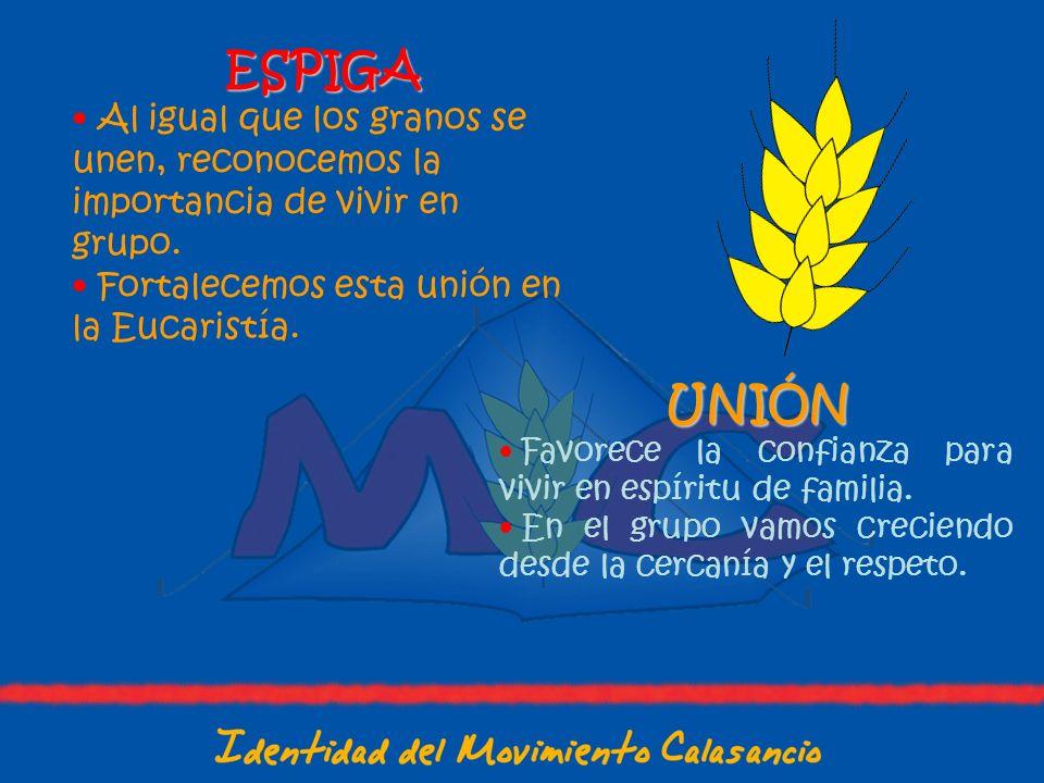 ESPIGA Al igual que los granos se unen, reconocemos la importancia de vivir en grupo. Fortalecemos esta unión en la Eucaristía.