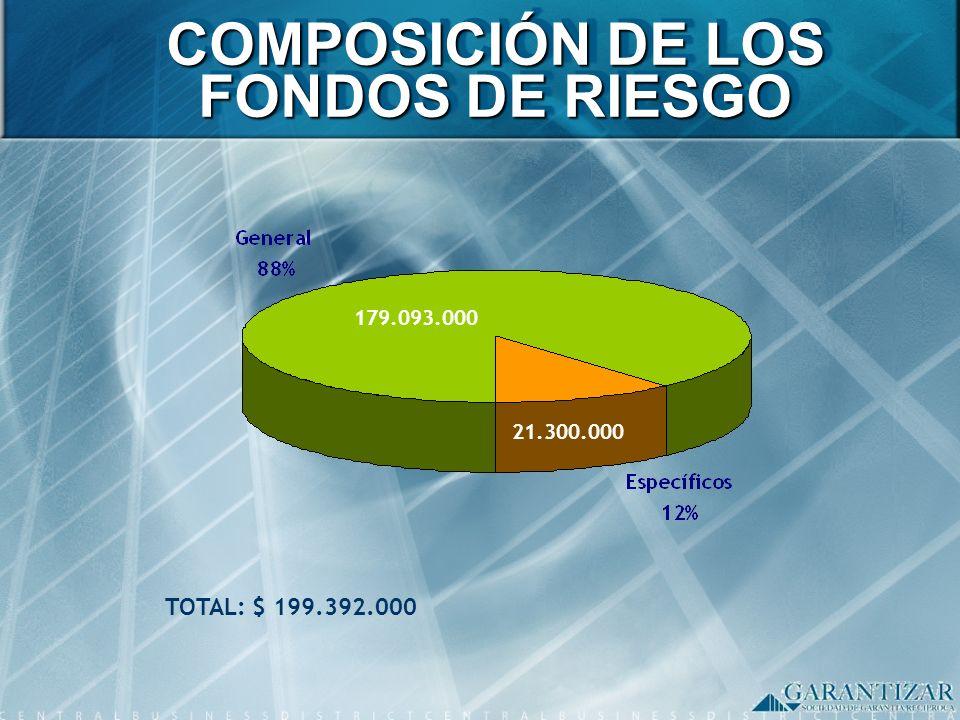 COMPOSICIÓN DE LOS FONDOS DE RIESGO
