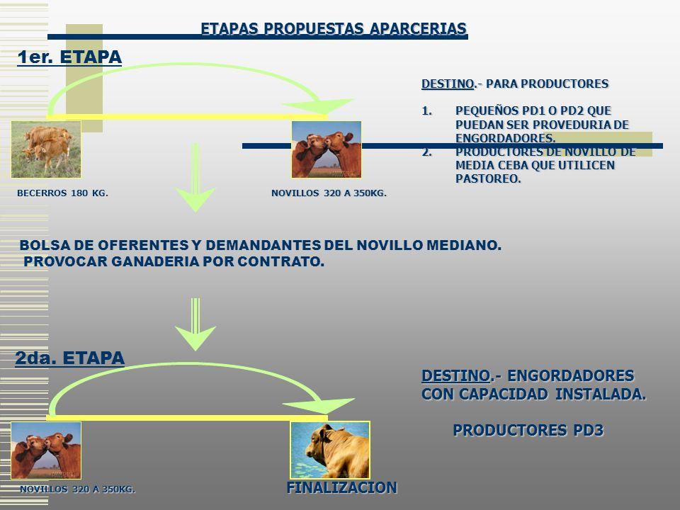 1er. ETAPA 2da. ETAPA ETAPAS PROPUESTAS APARCERIAS