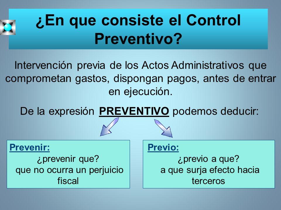 ¿En que consiste el Control Preventivo