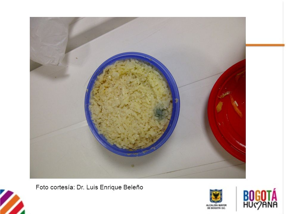 Foto cortesía: Dr. Luis Enrique Beleño