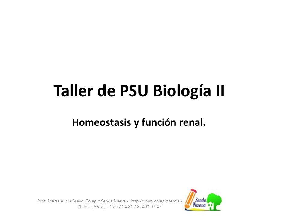 Taller de PSU Biología II