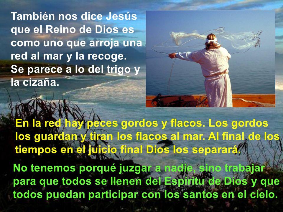 También nos dice Jesús que el Reino de Dios es como uno que arroja una red al mar y la recoge. Se parece a lo del trigo y la cizaña.