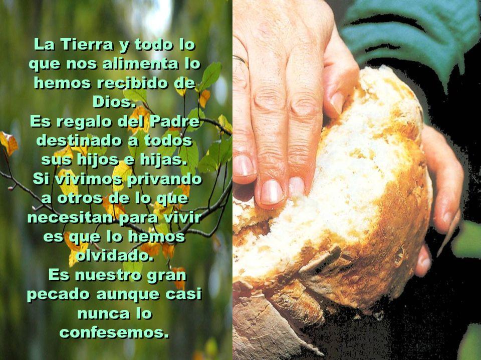 La Tierra y todo lo que nos alimenta lo hemos recibido de Dios