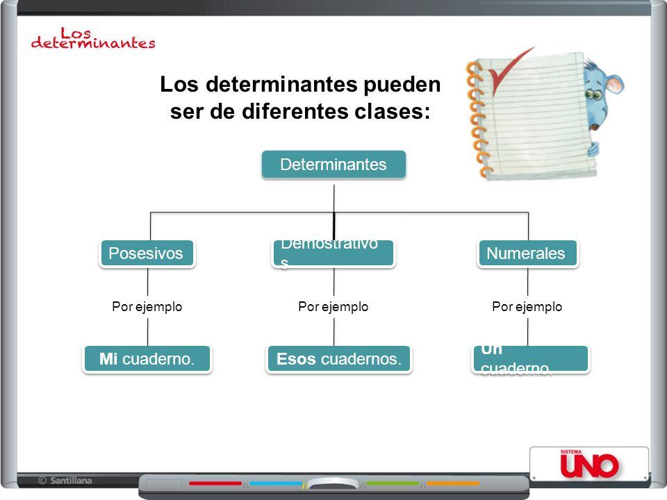 Los determinantes pueden ser de diferentes clases: