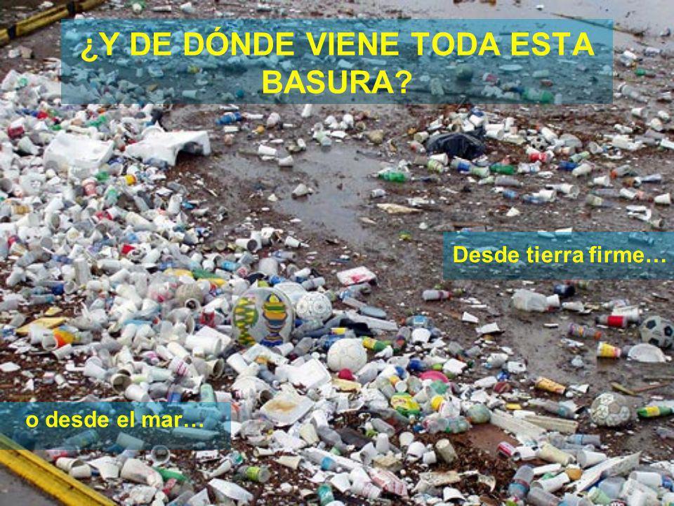 ¿Y DE DÓNDE VIENE TODA ESTA BASURA
