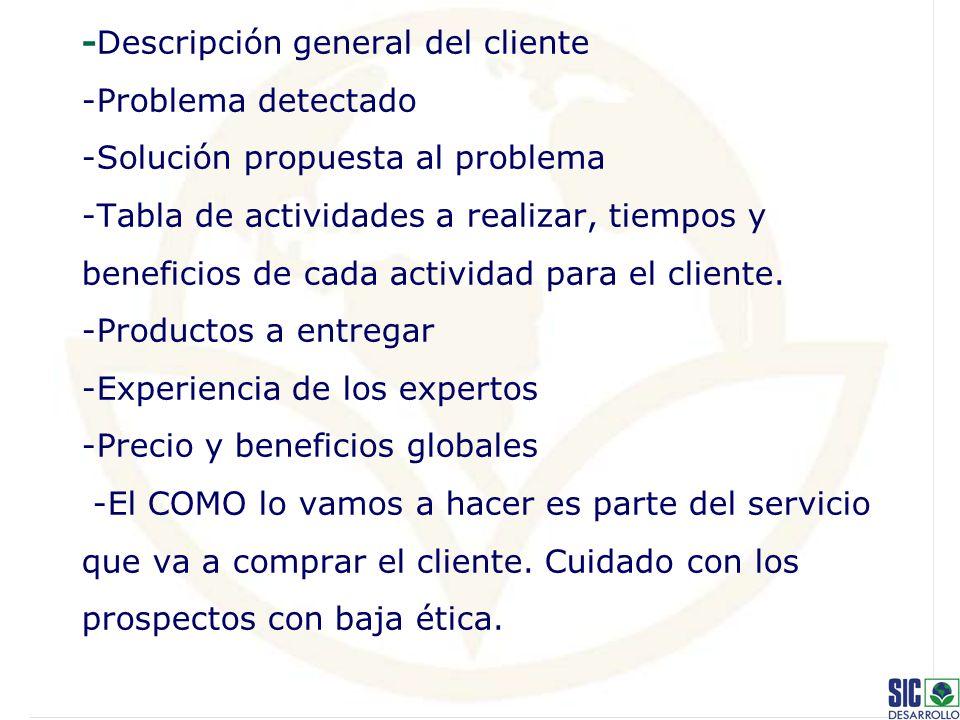 -Descripción general del cliente -Problema detectado -Solución propuesta al problema -Tabla de actividades a realizar, tiempos y beneficios de cada actividad para el cliente.