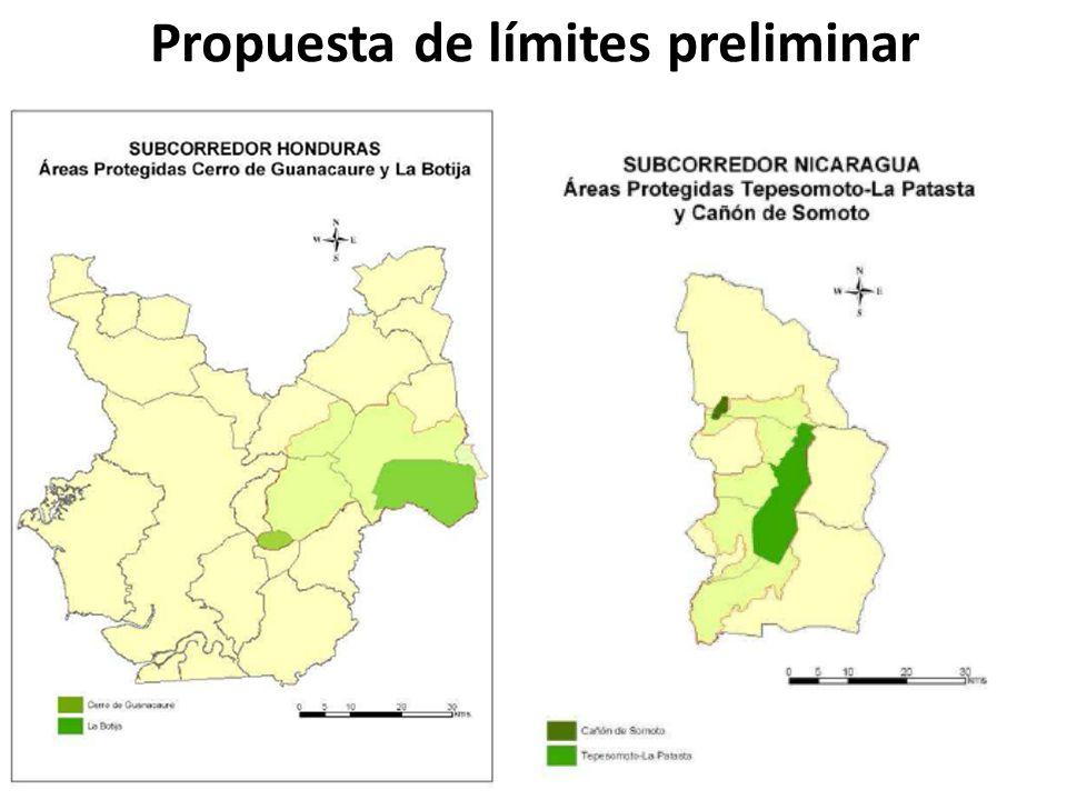 Propuesta de límites preliminar