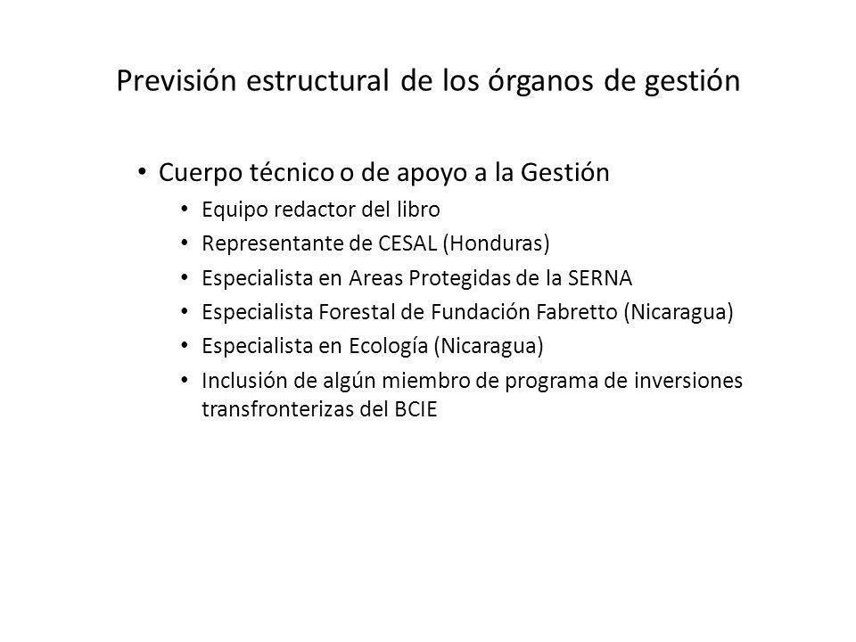 Previsión estructural de los órganos de gestión