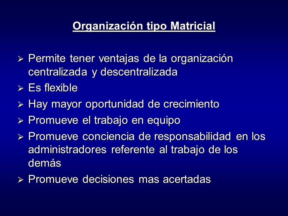 Organización tipo Matricial