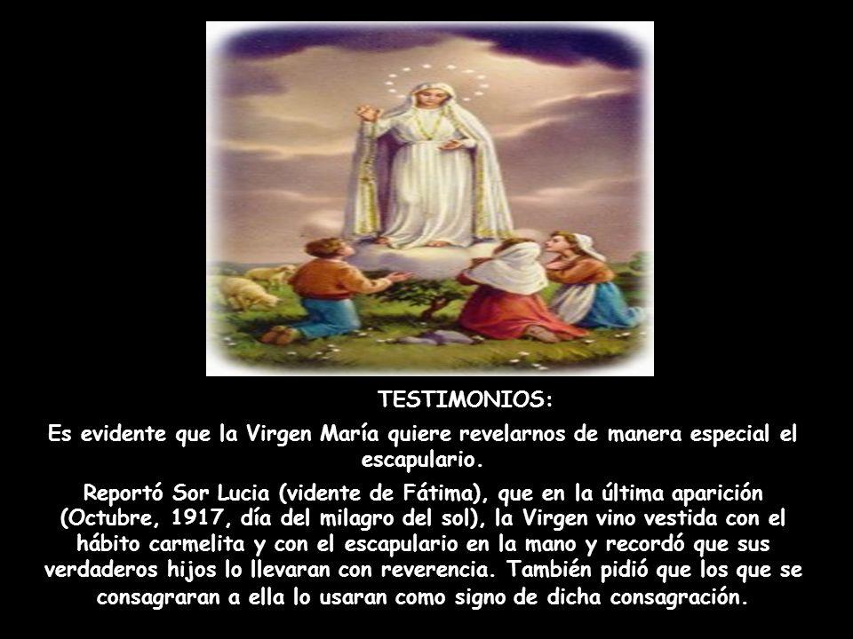 TESTIMONIOS: Es evidente que la Virgen María quiere revelarnos de manera especial el escapulario.