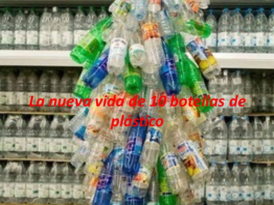 La nueva vida de 10 botellas de plástico