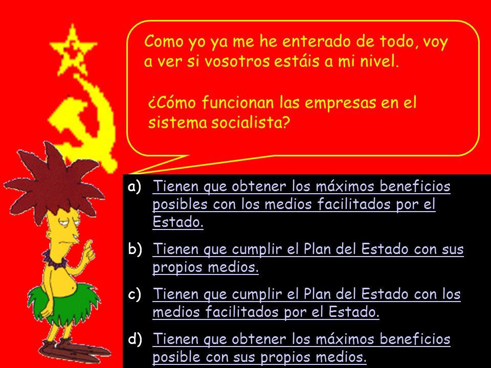 ¿Cómo funcionan las empresas en el sistema socialista